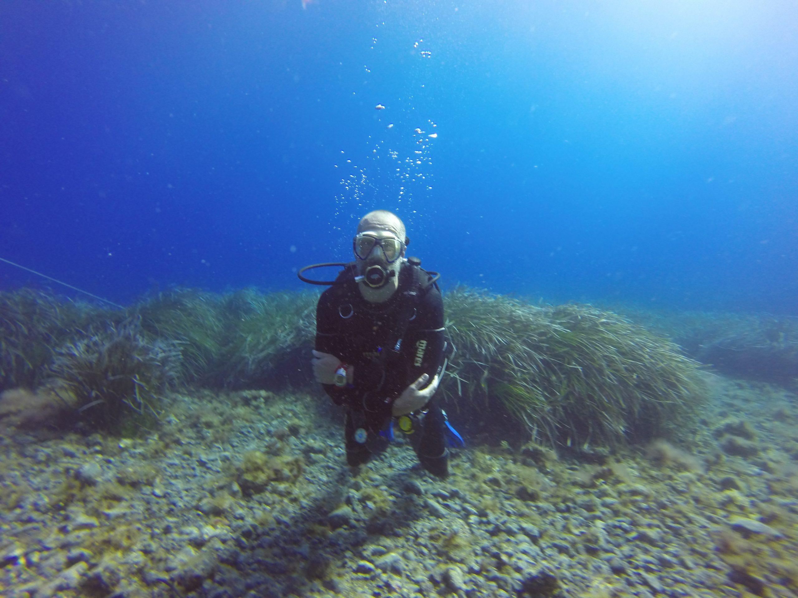PAEC diver